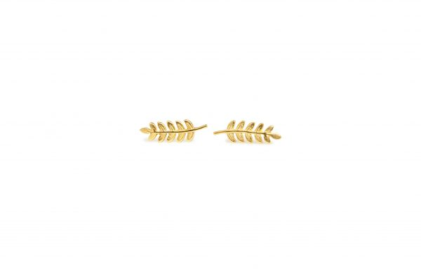 Fern -  - Λεπτεπίλεπτα, ντελικάτα και αέρινα χρυσά σκουλαρίκια σε σχήμα φύλλου φτέρης. Σίγουρα θα εντυπωσιάσετε φορώντας τα! Υλικό: Χρυσό 14κ