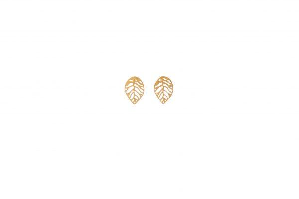 Layers earrings -  -